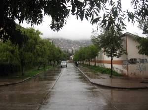 Green areas look nicer during rainseason