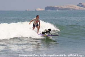 Domingo Pianezzi surfing with his dog