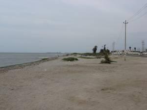 The beach in San Andres, near Pisco, Peru