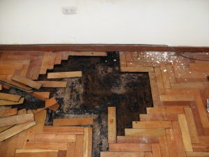hardwood floor water damage